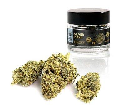 Susz Konopny CBD Silver Haze Premium 1g