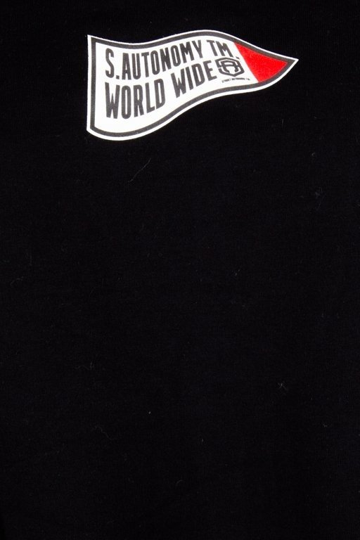 Bluza Street Autonomy Hoodie Champion Black